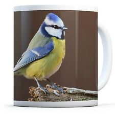 Beautiful Blue Tit Bird - Drinks Mug Cup Kitchen Birthday Office Fun Gift #15773