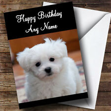 Bichon Frise Dog Personalised Birthday Greetings Card