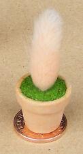 1:12 PEACH colore impianto + POT DOLLS HOUSE miniatura Giardino Fiore Accessorio MPE