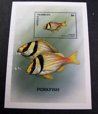Barbuda Souvenir Sheet Scott# 146a Porkfish 1969  MNH C365