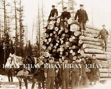EARLY 1900'S HUGE LOAD OF LOG'S PULLED BY HORSE'S LOG LOGGING LOGGER'S PHOTO
