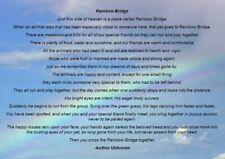 RAINBOW BRIDGE PET POEM CARD Dog Cat Horse friend memory sympathy memorial loss