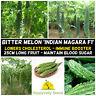 BITTER GOURD Indian Magara 5 Seeds TROPICAL ASIAN Vegetable Garden BITTER MELON