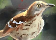 Original ACEO Miniature Oil Painting, Bird, Brown Thrasher by Gary Bruton