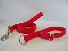 Puppy Sled Cushion Web Alaskan collar and lead set