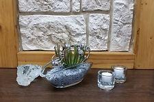 Tischgesteck Tischdekoration Nr. 4 Glasschale mit Sukkulente Spiegelgranulat