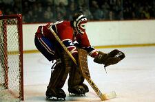 Ken Dryden Montreal Canadiens 8x10 Photo