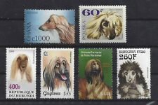 Dog Art Head Study Portrait Postage Stamp Collection Afghan Hound 6 Six x Mnh