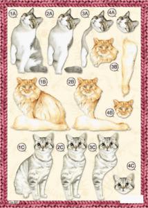 Craft UK A4 Die Cut Decoupage Sheet - Line 622 - CATS & KITTENS