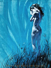 "Nude Woman in Field 8.5x11"" Photo Print Robert McGinnis Erotic Female Cover Art"