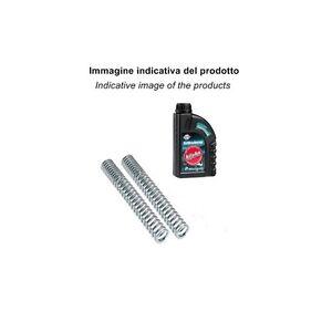 Kit molle forcella + olio BITUBO HONDA Silver Wing 600 01-07 - MF019