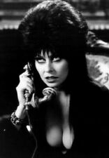 Vintage Elvira Cassandra Peterson Photo 728 Oddleys Strange & Bizarre