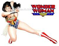 Wonder Woman Iron On T Shirt / Pillowcase Fabric Transfer #2 - Wonderwoman