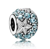 925 sterling silver Oceanic Starfish Frosty charm fit European Charm