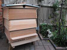 WBC Beehive in Cedar Wood