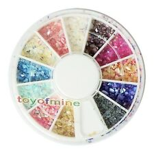 Glitter Crushed Shell Nail Art Tips Decoration Wheel