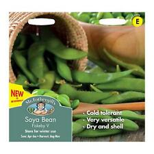 20x soja Fiskeby V-sec Haricots Graines Plante semences jardin ks31