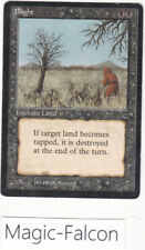 x1 Blight LEGENDS ENGLISH (1994) EX/NM MAGIC MTG ★★★★