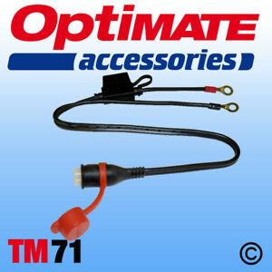 OPTIMATE ACCUMATE TM71 FUSED EYELET BATTERY LEAD M6 WEATHERPROOF CONNECTOR