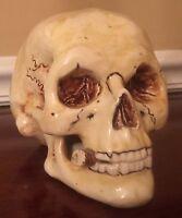 Antique Glazed Porcelain Skull Match Striker Tobacco Humidor