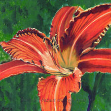 """SFA Original Art 8x8"""" Flower Acrylic Painting Day Lily Floral Realism - SMcNeill"""