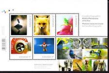 Canada MNH 2010 souvenir sheet sc# 2388 Wildlife Photography