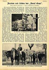 """Freuden und Leiden des """"Boeuf Gras"""" Karnevalbrauch in Frankreich * 1910"""
