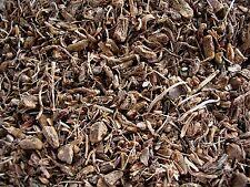 Dried Herbs: Coleus Root Organic (Coleus forskohlii) 250g