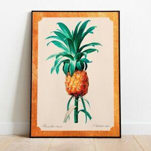 Vintage Pineapple Print, Fruit Print, Botanical Print, Kitchen Print