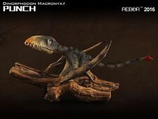 REBOR Dinosaur Collectables Dimorphodon Macronyx Punch 1:6 Scale