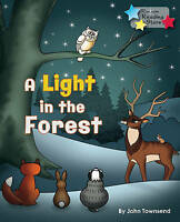 A Light in the Forest by Townsend, John (Paperback book, 2015)