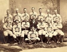 1889 Brooklyn Bridegrooms Team Photo Picture Vintage Baseball Print 8x10 11x14
