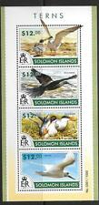 SOLOMON ISLANDS 2015 TERNS (1) MNH