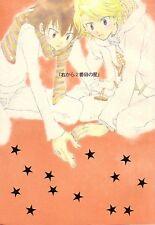 """DIGIMON Adventure YAOI Doujinshi """" Migikara 2banme no Hoshi """" Taichi Yamato"""