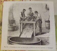 XIXème L'égrappage du raisin au chassis , pour la fabrication des vins supérieur