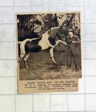 1919 Mr Ef Calthorpe Of Loughton Training Arab Horses