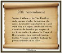 anti Trump: 25th AMENDMENT  humorous political bumper sticker