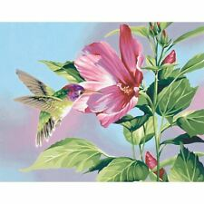 """Paint Works Paint By Number Kit 14""""X11""""-Hibiscu s Hummingbird -91419"""