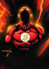 DC Comics FLASH THE FASTEST MAN ALIVE #13 (2007) File Photo