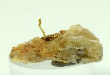 2.6cms NATIVE GOLD OF THE INCAS WIRE CRYSTAL QUARTZ PERU MINERAL SPECIMEN L407
