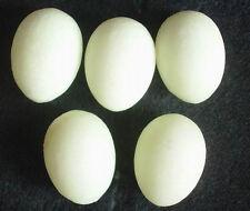 5 WHITE CALCITE CRYSTAL EGGS GLOW IN THE DARK HEALING