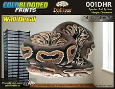 Removeable Wall Decal Snake Ball Python Cold Blooded Prints Sticker 001DHR