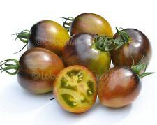 Brad's Atomic Fusion Tomato Seeds Sweet Organic New Rare Grape Heirloom USA