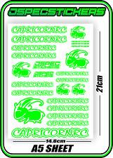 CAPRICORN RC STICKER A5 LAB 1/8 F1 1/10 TESLA ELECTRIC NITRO CAR HARD GREEN W