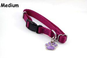 Medium Adjustable Nylon Collar & Glitter Pet ID Tag Diamond Engraved Personalize