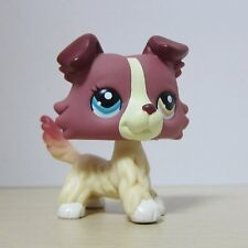 Littlest Pet Shop Animal LPS Toys #1262 Colorful Eye Cream Collie Dog Rare Su1