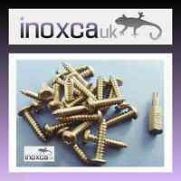 25 @ 4 x 12mm STAINLESS STEEL TORX BUTTON HEAD WOOD SCREW SECURITY PIN + T20 BIT