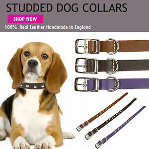 Dog Metal Studded Small Puppy Cat 100% Real Leather Collar Handmade In England