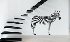 Zebra Black And White Animas Child  Mural  Wall Art Decor Vinyl Sticker z558