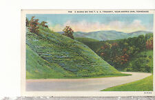 A Scene on the T. V. A. Freeway  near  Norris Dam TN  Linen Postcard 11217